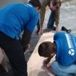 Монтаж крепежа верхней части мебельной конструкции